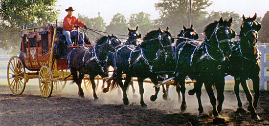 Your six core power archetypes take you through life, just as six horses pull the stagecoach.