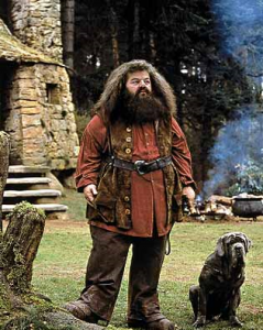 Rubeus Hagrid, from the Harry Potter book series, is the world's most famous Green Man.