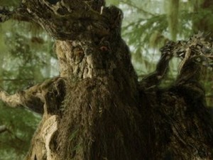 Treebeard, an Ent featured in Tolkien's book the War of the Ring, is a Green Man figure.